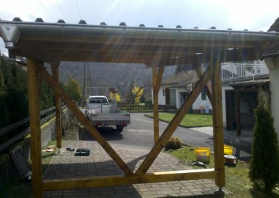 Carport Pultdach (Small)